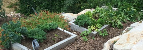 Edible Garden Spaces